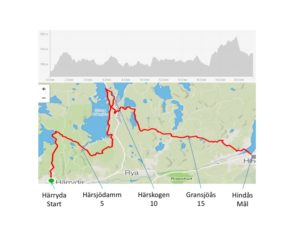 HALF DISTANCE marathon Skogsmaran